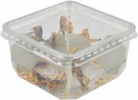 Live reptile food prepack